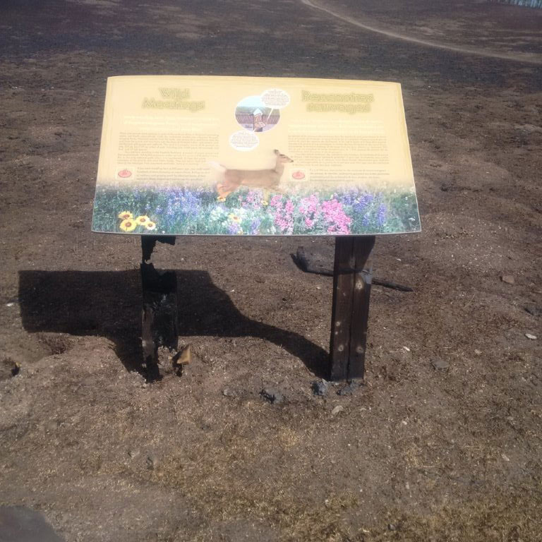 HPL SIGN AFTER FIRE, WATERTON LAKES NP